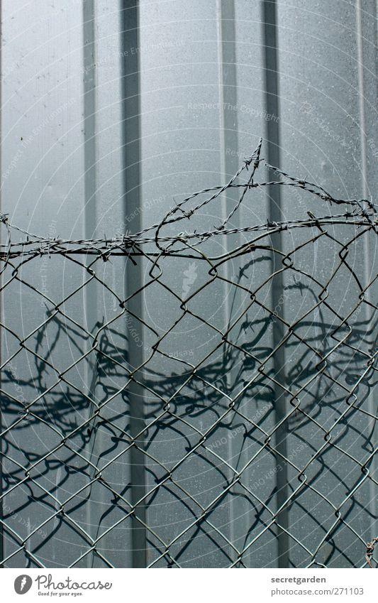 abgrenzung oder schutz? kalt Wand grau Metall Linie Angst Fassade Sicherheit Netzwerk bedrohlich Schutz Zaun Neigung Kontrolle durcheinander