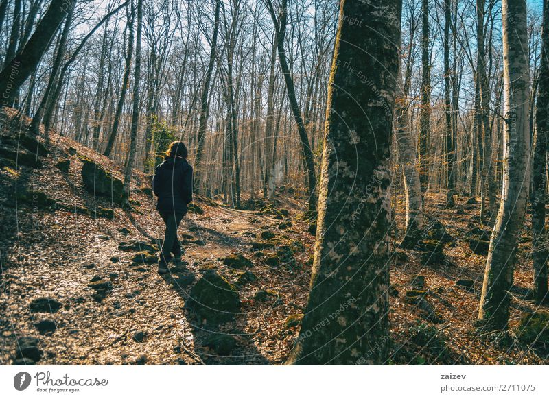 Ein Mädchen, das durch einen Wald geht. Erholung Meditation Ferien & Urlaub & Reisen Tourismus Abenteuer wandern Mensch Frau Erwachsene Natur Landschaft Herbst