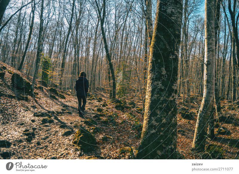 Ein Mädchen, das in einer herbstlichen Landschaft spazieren geht. Erholung Meditation Ferien & Urlaub & Reisen Tourismus Abenteuer wandern Mensch Frau