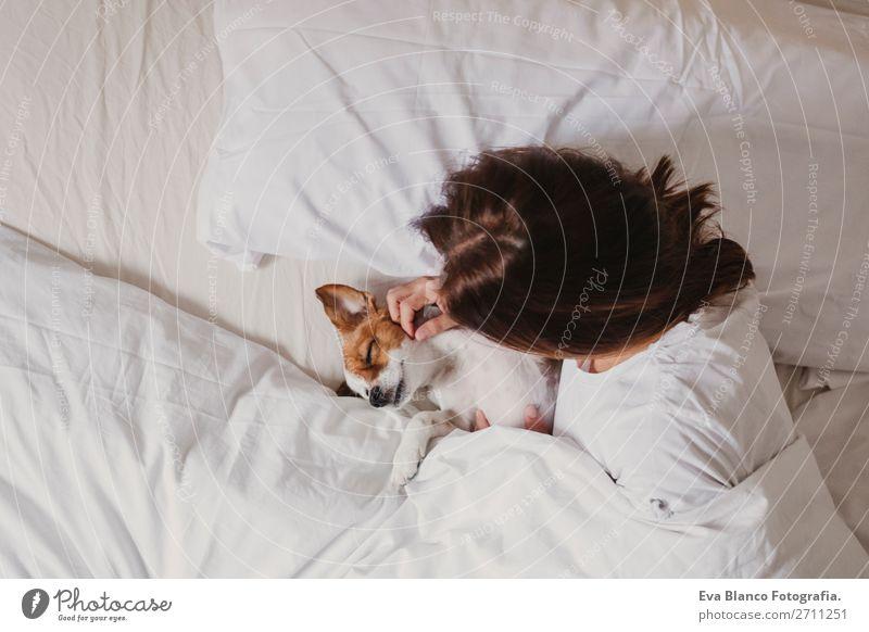 Frau Mensch Hund weiß Haus Erholung Tier Freude Gesicht Erwachsene Liebe lustig klein Büro elegant niedlich