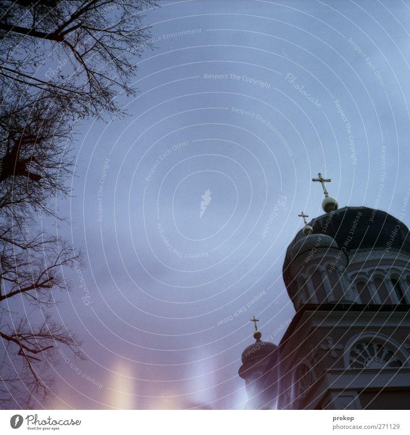 Russisch Orthodox Umwelt Natur Pflanze Baum Kirche Bauwerk Gebäude Architektur Dach Sehenswürdigkeit dunkel gruselig Kruzifix Kirchturm Religion & Glaube