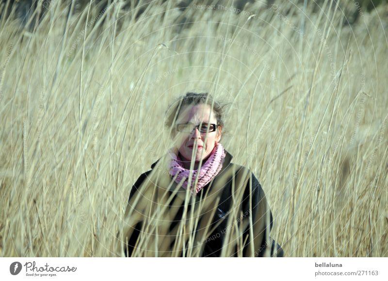 Hiddensee | Feldstudie Mensch Frau Natur Jugendliche schön Gesicht Erwachsene feminin Leben Haare & Frisuren Kopf Junge Frau Körper 18-30 Jahre Brille