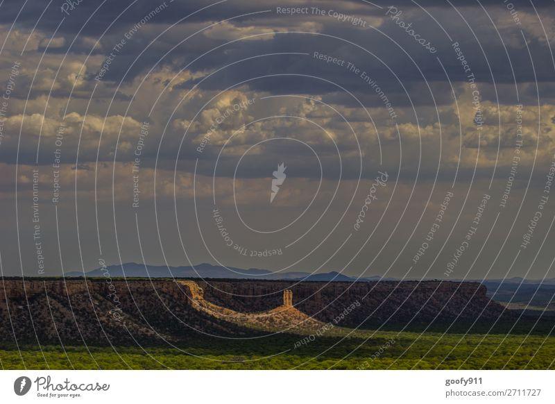 Im Rampenlicht II Himmel Ferien & Urlaub & Reisen Natur Pflanze schön Landschaft Sonne Wolken Tier Einsamkeit Ferne Wärme Umwelt Tourismus Freiheit Felsen