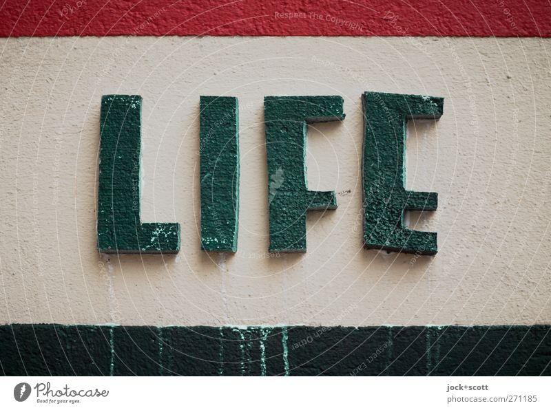 Life is bunt. Wand Schriftzeichen Streifen dreckig einfach grün erleben Putz Englisch Leben Styropor hervorragend selbstgemacht verwittert Schaumstoff