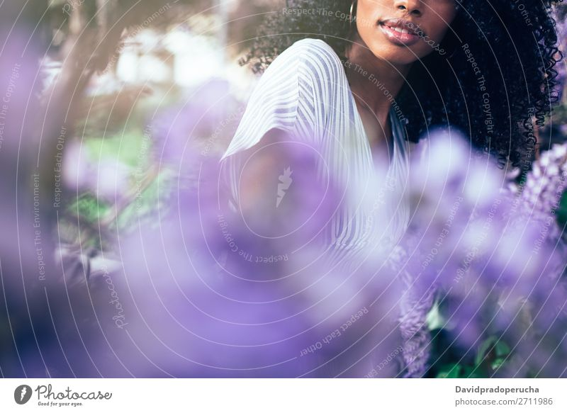 Junge schwarze Frau, die umgeben von Blumen sitzt. Blüte Frühling Fliederbusch Porträt multiethnisch Afrikanisch Person gemischter Abstammung Lächeln