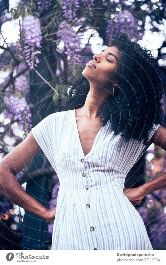 Nachdenkliche junge schwarze Frau, die von Blumen umgeben sitzt. Blüte Frühling Fliederbusch Porträt multiethnisch Afrikanisch Person gemischter Abstammung