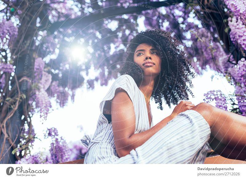 Junge schwarze Frau, die umgeben von Blumen sitzt. Blüte Frühling Fliederbusch Porträt multiethnisch Afrikanisch Person gemischter Abstammung Lächeln Wegsehen