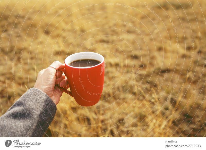 Natur Sommer rot Hand Erholung ruhig schwarz Gesundheit Lifestyle Herbst natürlich Gesundheitswesen Ernährung frisch Feld Schönes Wetter