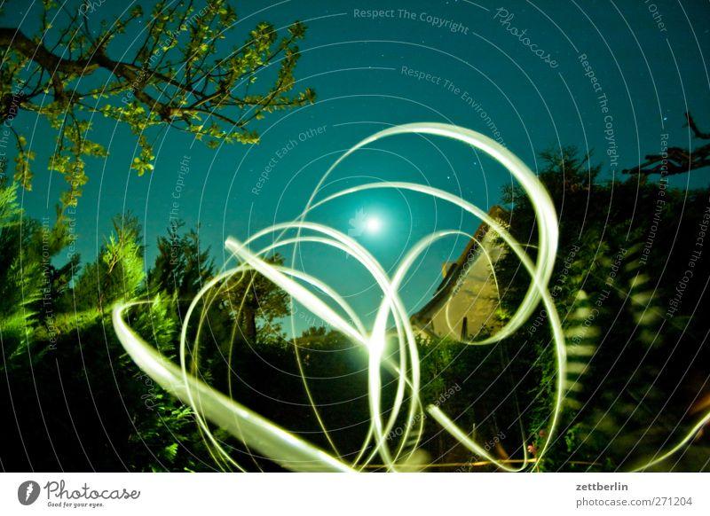 Blinkern im Vollmond Sommer Garten Umwelt Natur Landschaft Mond Frühling Klima Klimawandel Wetter Schönes Wetter Baum Wachstum einzigartig Freude Glück