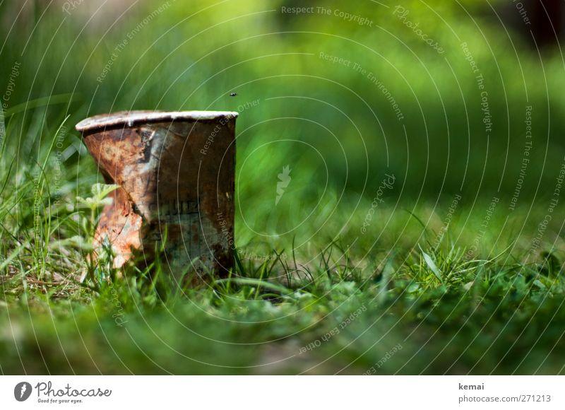 AST5 | Altmetall Umwelt Natur Pflanze Sonne Sonnenlicht Sommer Schönes Wetter Gras Grünpflanze Park Konservendose Dose Metall alt kaputt braun grün Ende