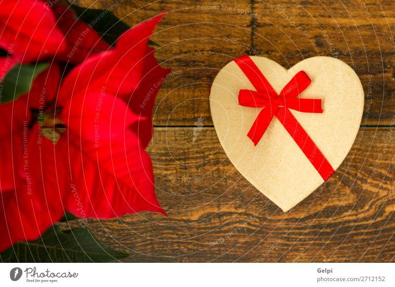 Präsentiert mit Herzform und saisonaler Pflanze mit roten Blättern. Design Glück Dekoration & Verzierung Tisch Feste & Feiern Weihnachten & Advent Hochzeit