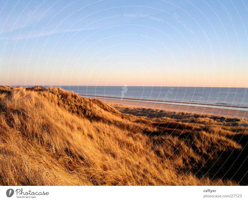 Blick auf´s Meer Wasser Himmel blau Strand Gras Stranddüne