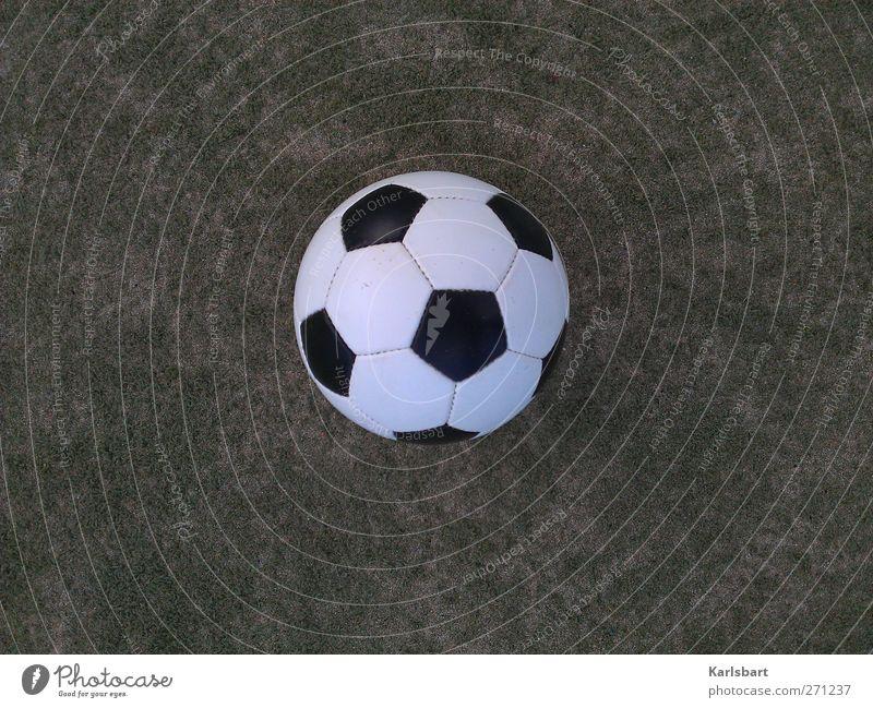 Das Runde ist im Eckigen enthalten. II Freude Sport Spielen Bewegung Gras Feste & Feiern Freizeit & Hobby Fußball Erfolg Design Tourismus Fitness Sportrasen