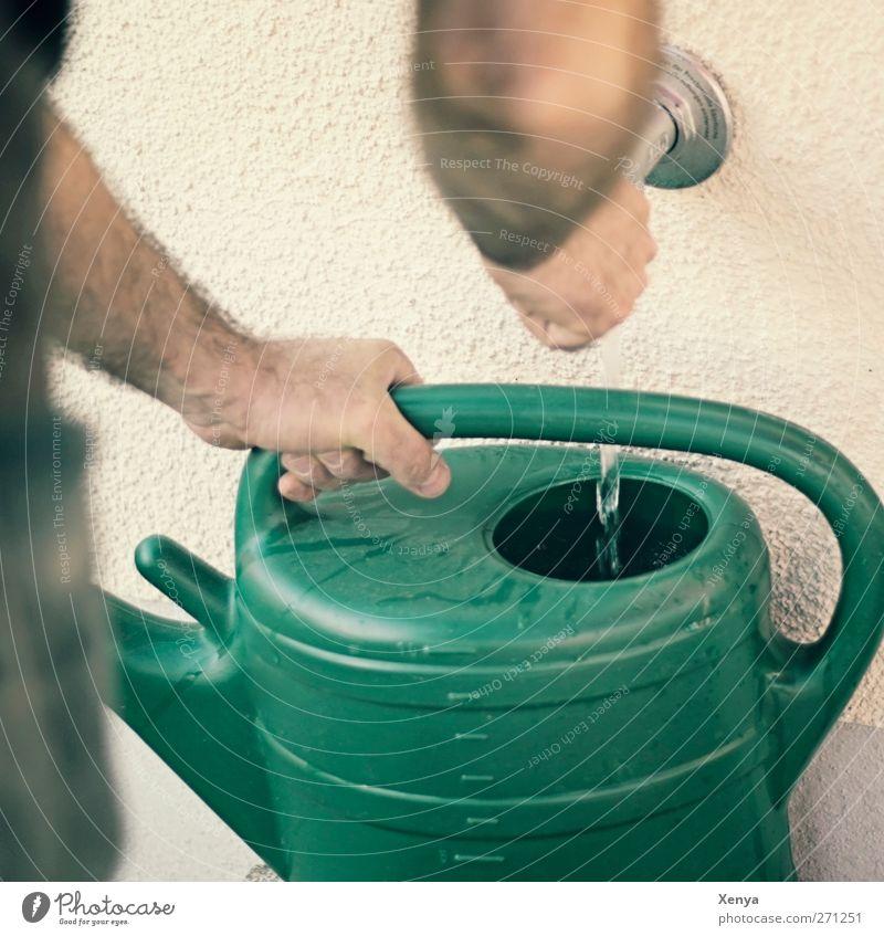 Kanne Wasser Mensch grün Erwachsene Garten Arme maskulin Bildausschnitt Gartenarbeit gießen Gießkanne