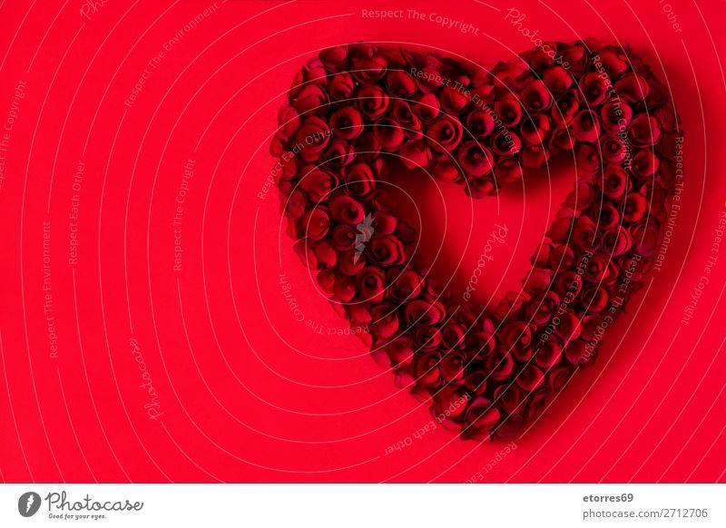 Herz aus roten Rosen auf rotem Hintergrund zum Valentinstag. Liebe Muttertag Blume Symbole & Metaphern Feste & Feiern Feiertag Februar Blumenstrauß