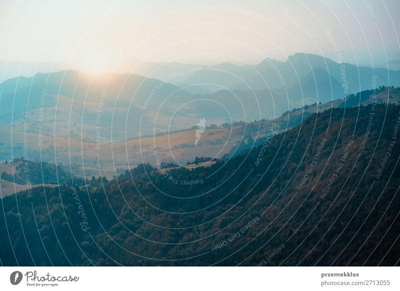 Bergtallandschaft Ferien & Urlaub & Reisen Tourismus Ausflug Sommer Sommerurlaub Sonne Berge u. Gebirge Umwelt Natur Landschaft Himmel Nebel Baum Park Wald