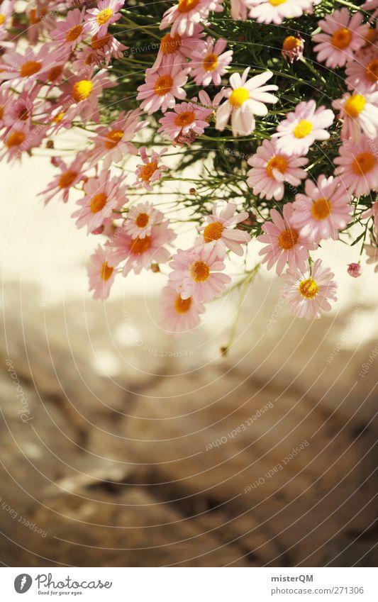 Blümele. Kunst ästhetisch Zufriedenheit Blume Blumenstrauß Blumentopf Blumenvase Blumenhändler Blumenstengel Blumenkasten Blumenladen rosa
