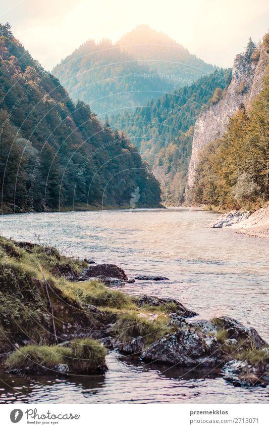 Bergfluss Tal Landschaft schön Ferien & Urlaub & Reisen Tourismus Sommer Berge u. Gebirge Natur Himmel Baum Park Wald Hügel Felsen Fluss natürlich grün Dunajec