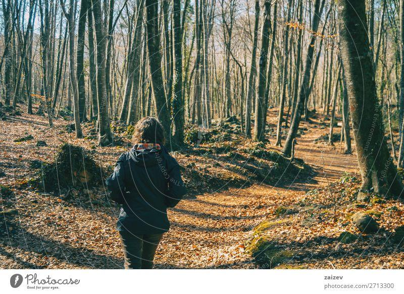 Eine junge Frau von hinten schön Erholung Meditation Ferien & Urlaub & Reisen Tourismus Abenteuer wandern Mensch Erwachsene Natur Landschaft Herbst Baum Moos