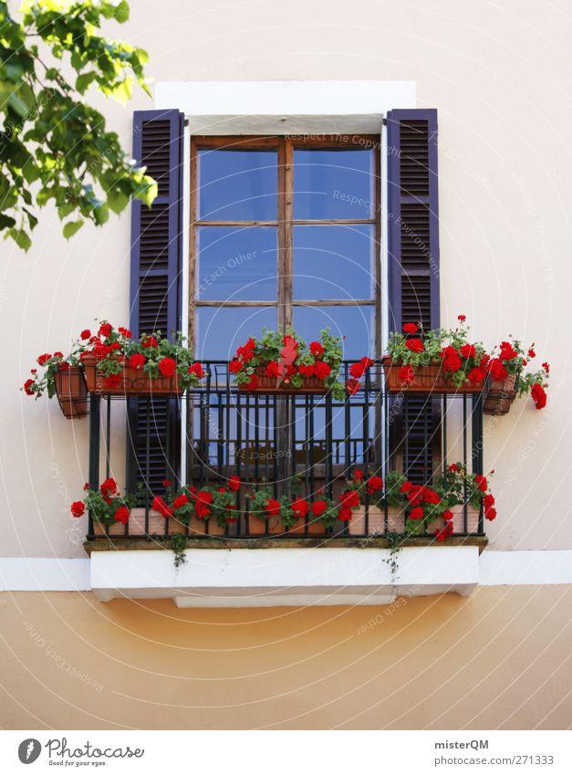Trautes Heim. Blume Fenster Kunst ästhetisch Balkon Fensterscheibe Heimat Fensterladen Fensterblick Einfamilienhaus Heimweh heimisch Seniorenheim Fensterplatz