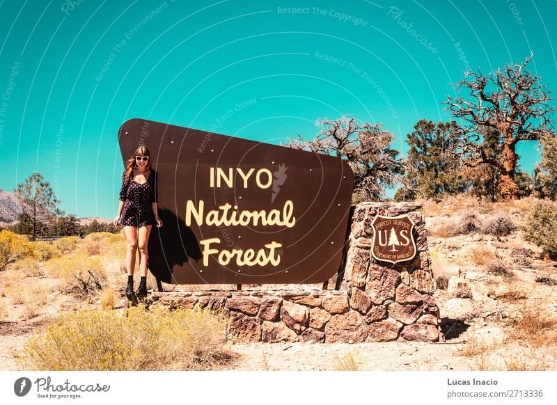 Mädchen beim INYO National Forest Schild, in der Nähe von Kalifornien und Nevada. Ferien & Urlaub & Reisen Tourismus Mensch feminin Junge Frau Jugendliche