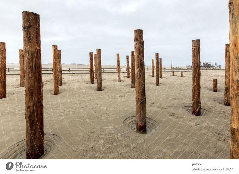 Vollpfosten Holz braun grau Pfosten Holzpfahl St. Peter-Ording Strand Farbfoto Gedeckte Farben Menschenleer Tag Starke Tiefenschärfe