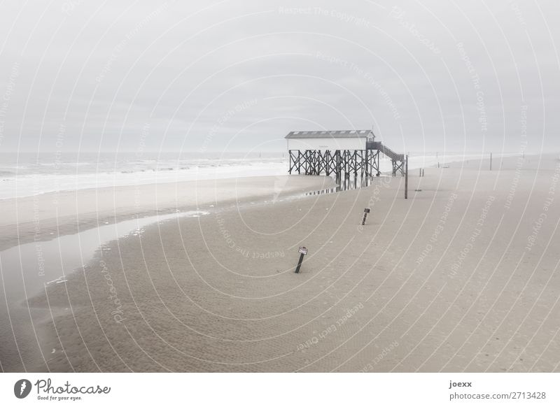 Glück in der Ferne Wetter schlechtes Wetter Wind Nebel Küste Strand Nordsee Haus Pfahlhaus hoch maritim retro wild braun grau weiß Fernweh Einsamkeit Idylle