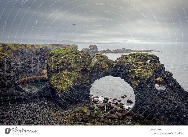 Tor Natur Landschaft Pflanze Himmel Wolken Horizont Frühling schlechtes Wetter Wind Regen Moos Felsen Küste Strand Meer dunkel gigantisch blau braun grau grün