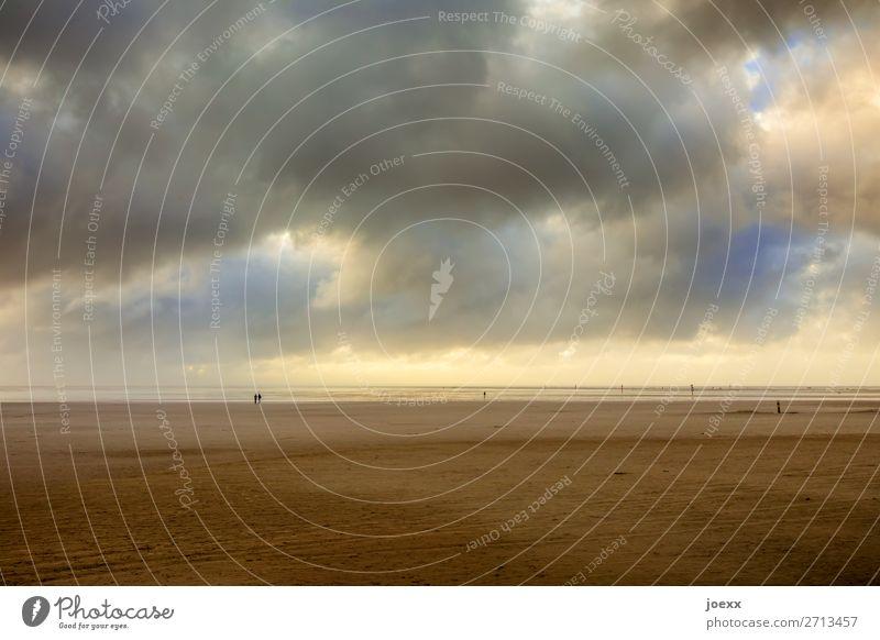 Geistfrei Himmel blau Landschaft Meer Wolken Ferne Strand Umwelt Küste Freiheit braun Ausflug Schönes Wetter Wohlgefühl