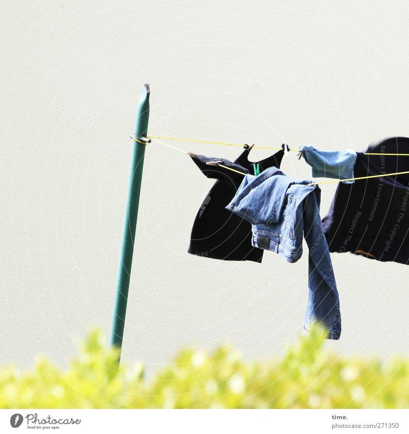 Hiddensee | air conditioned Frühling Garten Metall fliegen wild frisch Kommunizieren T-Shirt Schönes Wetter Jeanshose Zusammenhalt hängen durcheinander Wäsche