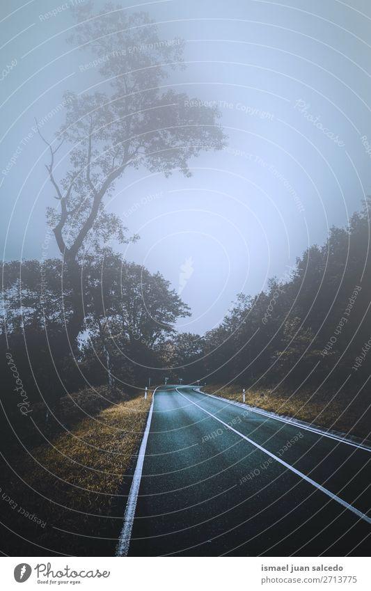 Ferien & Urlaub & Reisen Natur Landschaft rot Baum Erholung Blatt ruhig Wald Berge u. Gebirge Straße Wege & Pfade Platz Spanien Gelassenheit Tapete