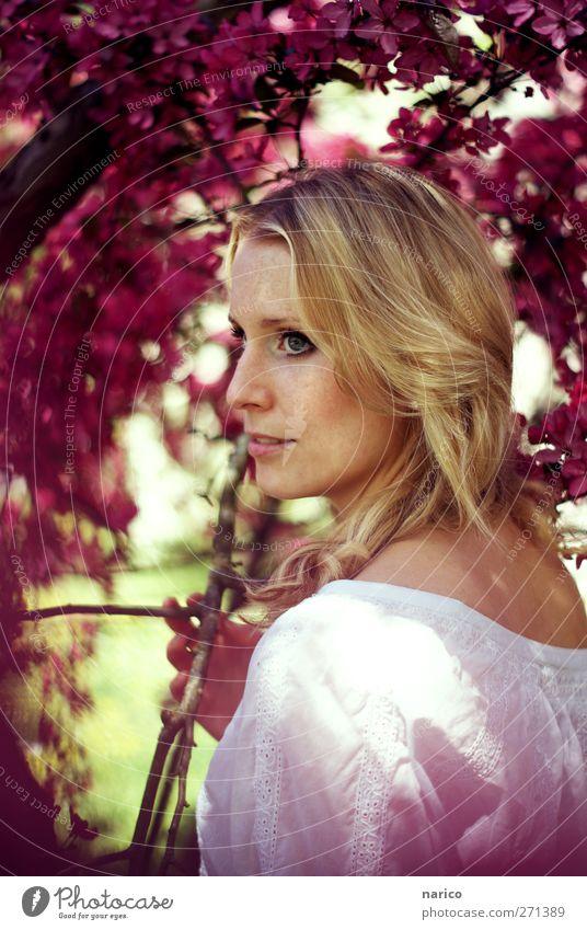 summertime VII Mensch Frau Natur Jugendliche weiß schön Baum Pflanze Sommer Einsamkeit Erwachsene feminin Blüte träumen Stimmung blond