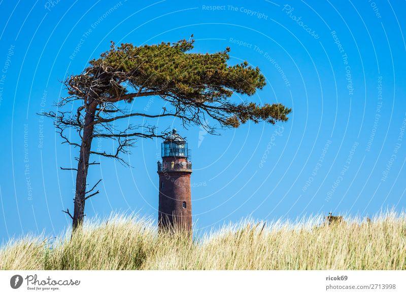 Leuchtturm Darßer Ort auf dem Fischland-Darß Erholung Ferien & Urlaub & Reisen Tourismus Natur Landschaft Wolken Wetter Baum Küste Ostsee Architektur