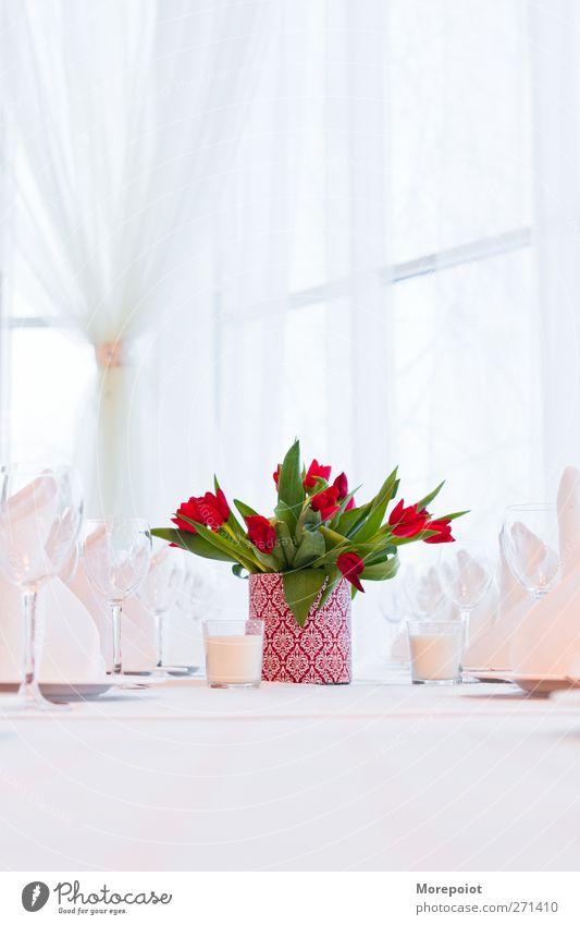 Ferien & Urlaub & Reisen schön grün weiß Blume rot Freude Innenarchitektur Lifestyle Feste & Feiern Design Häusliches Leben Dekoration & Verzierung elegant Glas Tisch