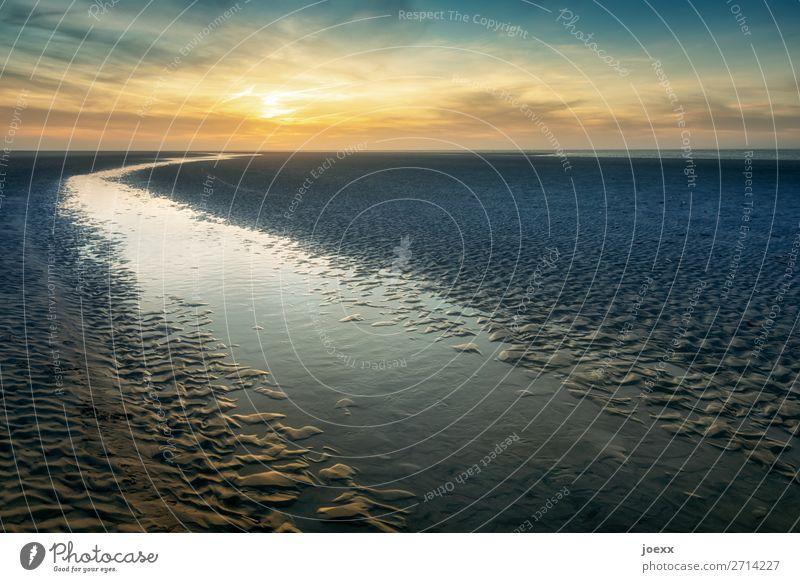 Durchs Leben Natur Landschaft Wasser Himmel Wolken Sonnenaufgang Sonnenuntergang Küste Strand Nordsee groß Unendlichkeit maritim schön blau braun orange ruhig