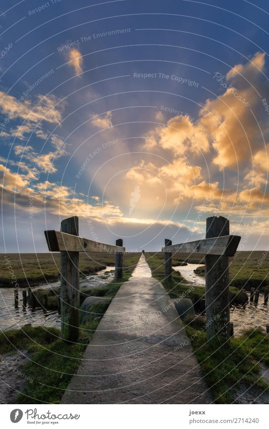 | wandern 2 Mensch Himmel Wolken Horizont Wetter Schönes Wetter Wiese Nordsee Brücke Wege & Pfade Holz gehen nass blau braun grün Optimismus Mut ruhig Hoffnung