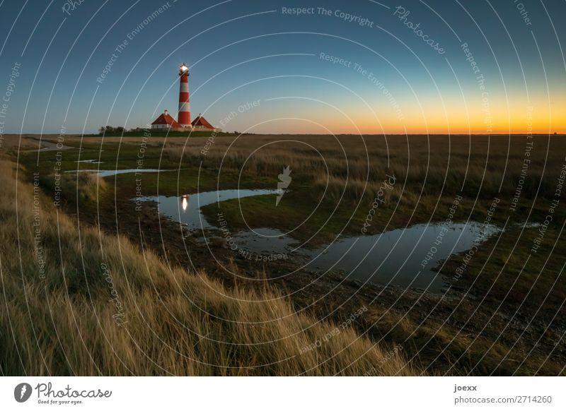 Abendstimmung Leuchtturm Westerheversand Sonnenuntergang Schönes Wetter Leuchtfeuer Sehenswürdigkeit maritim hoch alt weiß rot Idylle mehrfarbig Farbfoto