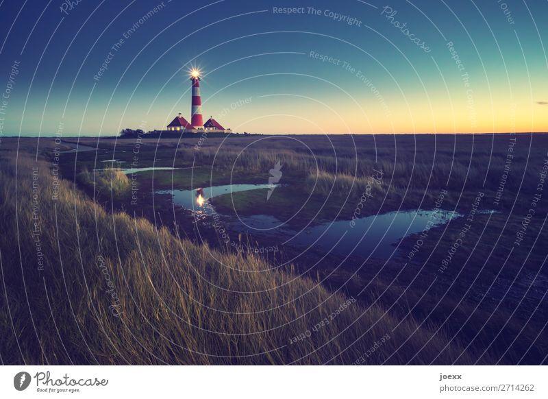 Westerhever Landschaft Himmel Horizont Schönes Wetter Wiese Küste Nordsee Westerhever Leuchtturm Menschenleer Haus Gebäude alt hoch maritim blau braun rot weiß