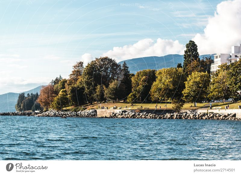 Stanley Park und das Meer in Vancouver, Kanada Sommer Strand Umwelt Natur Sand Himmel Baum Blatt Felsen Küste Skyline Abenteuer Erholung Freiheit Freude