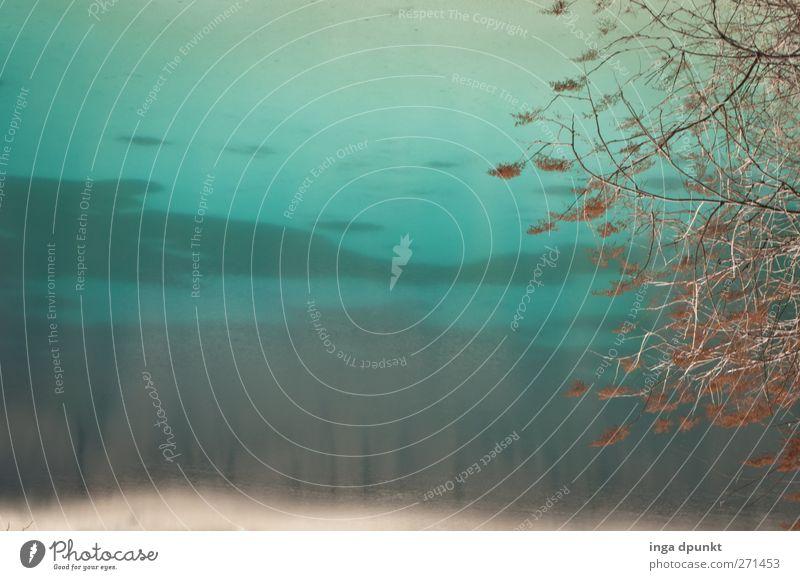 Ein blaues Wunder Natur Wasser Pflanze Strand Farbe Winter Umwelt kalt Sand außergewöhnlich Urelemente Sträucher Seeufer China Fernweh
