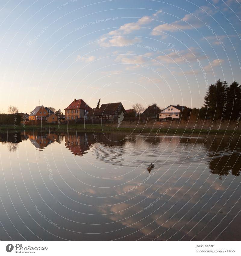 mein Herz erfasst die Leere nicht der Verstand Himmel Natur blau Wasser Baum Einsamkeit Landschaft Wolken Haus Tier Wärme Bewegung natürlich Frühling Schwimmen & Baden Horizont