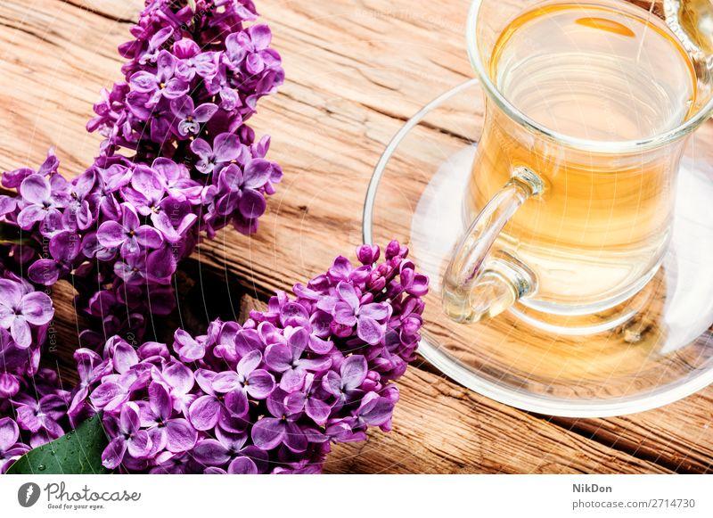 Tasse Tee und Fliederblüten Kräutertee Blume Fliederbusch Becher Frühling trinken Tisch Blüte Kräuterbuch frisch Aroma natürlich Blatt Blütenblatt rosa