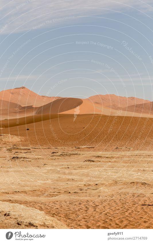 Namib Wüste Namibia II Himmel Ferien & Urlaub & Reisen Natur Pflanze schön Landschaft Tier Einsamkeit Ferne Wärme Umwelt Tourismus Freiheit Sand Ausflug Erde