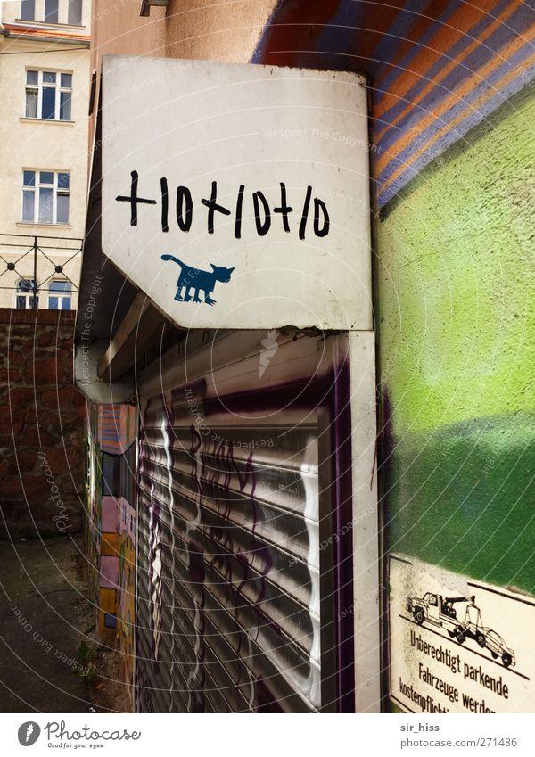 Hot! (or not)? Kunst Straßenkunst Stadt Menschenleer Ladengeschäft Fassade Jalousie Rollo Rollladen Gitter Katze kaufen entdecken grün violett orange weiß