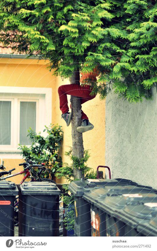 an den mülltonnen vorbei ... Mensch Kind Baum Mädchen Freude Bewegung Gebäude Beine Fuß Autofenster Kindheit Fassade Beton Klettern Hinterhof 3-8 Jahre