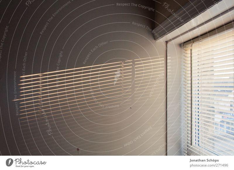 Lichteinfall Mauer Wand ästhetisch Raum Fenster Jalousie Nachmittagssonne Wohnung kahl minimalistisch leer Leerstand Fensterrahmen Schatten Schattenspiel