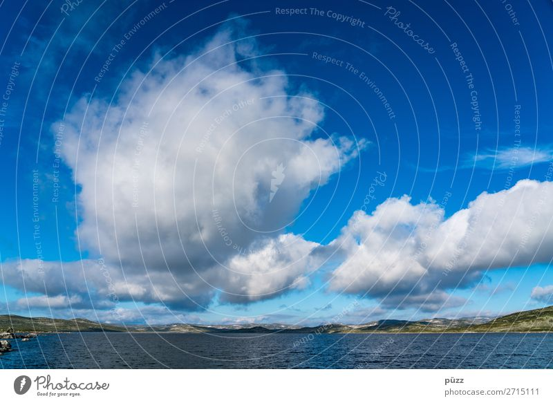 Wolken Himmel Ferien & Urlaub & Reisen Natur Sommer blau weiß Landschaft Tier Einsamkeit Ferne Umwelt Tourismus Freiheit See Ausflug
