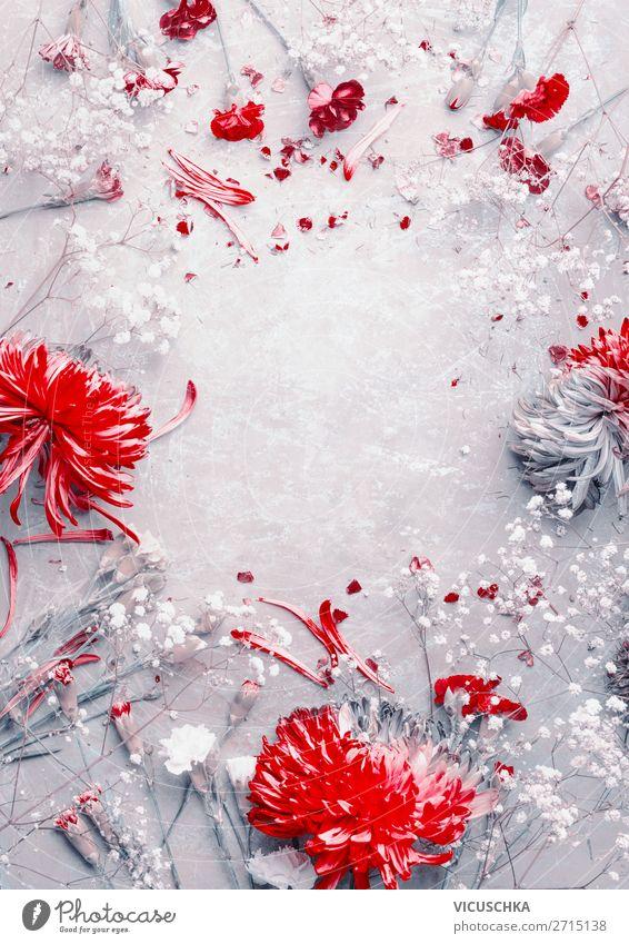 Rote und weiße Blumen Rahmen Stil Design Feste & Feiern Natur Pflanze Dekoration & Verzierung Blumenstrauß grau rot Hintergrundbild frame flower pattern beauty