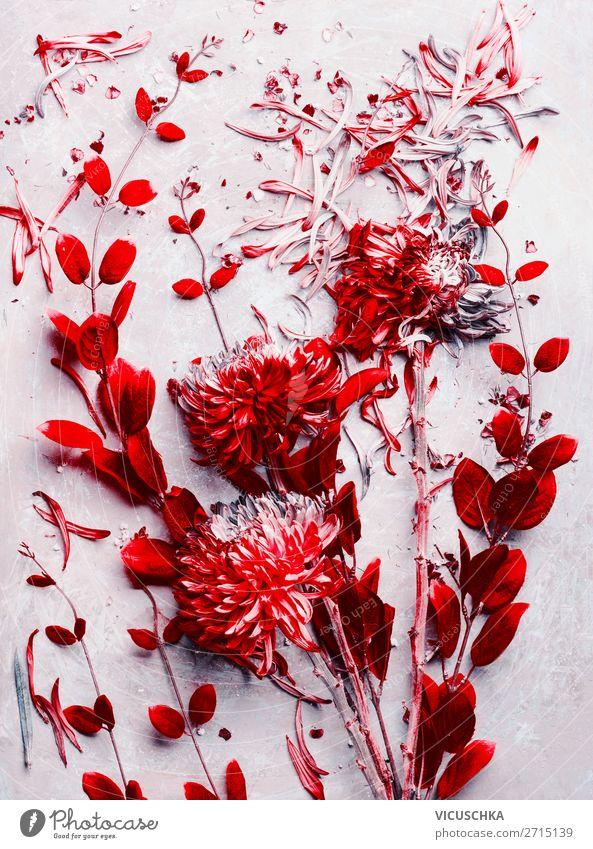Rote Blumen und Blätter Composing Stil Design Dekoration & Verzierung Natur Pflanze Herbst Blatt Blüte Blumenstrauß rosa rot Farbfoto Studioaufnahme