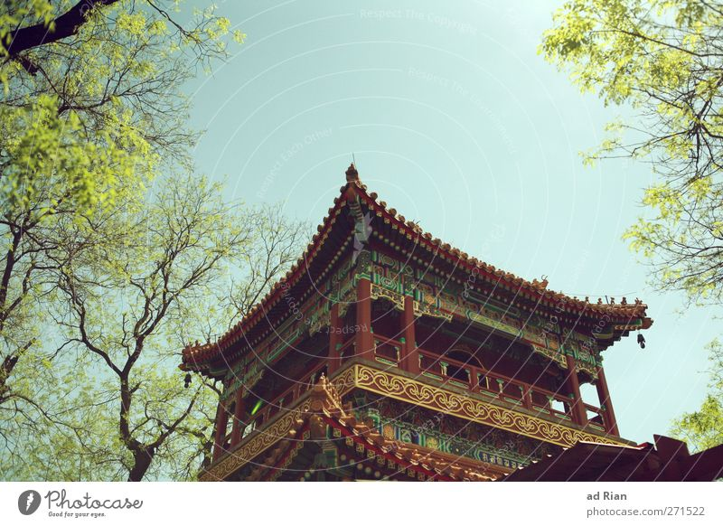 Lamatempel Frühling Pflanze Baum Park Wiese Peking China Menschenleer Palast Burg oder Schloss Tempel Pagode Pagodendach Tempelturm Lama Tempel alt authentisch
